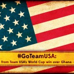 MV_2014_Online_Email_300x250_USA